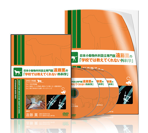 日本小動物外科設立専門医 遠藤薫の「学校では教えてくれない外科学」