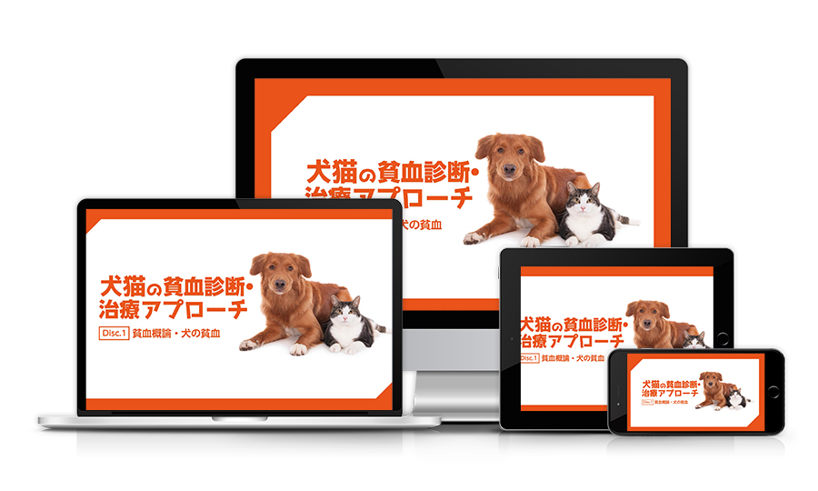 犬猫の貧血診断アプローチ│医療情報研究所DVD