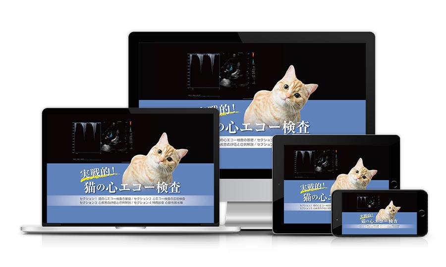 実戦的!猫の心エコー検査│医療情報研究所DVD