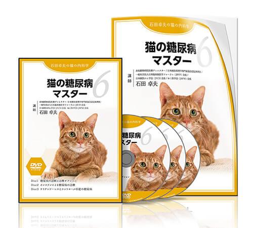 猫の糖尿病マスター