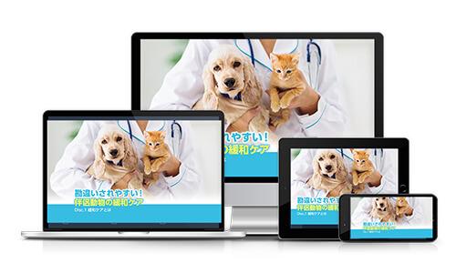 勘違いされやすい!伴侶動物の緩和ケア│医療情報研究所DVD