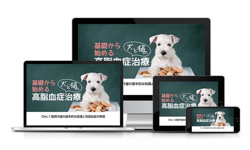 基礎から始める犬と猫の高脂血症治療│医療情報研究所DVD