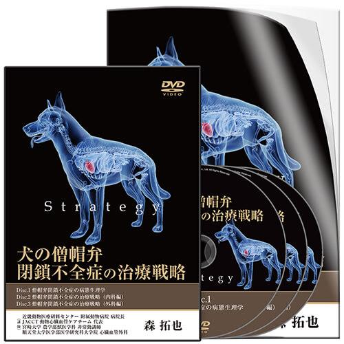 犬の僧帽弁閉鎖不全症の治療戦略