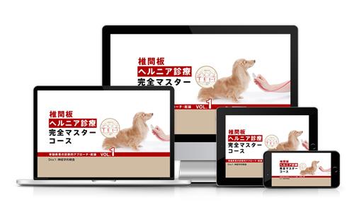 椎間板ヘルニア診療 完全マスターコース(3巻セット)│医療情報研究所DVD