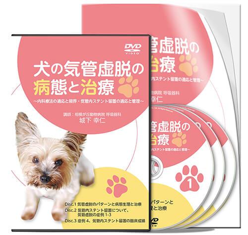 犬の気管虚脱の病態と治療 ~内科療法の適応と限界、気管内ステント留置の適応と管理~
