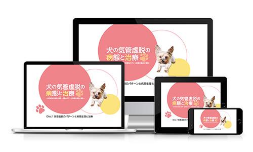 犬の気管虚脱の病態と治療~内科療法の適応と限界、気管内ステント留置の適応と管理~│医療情報研究所DVD