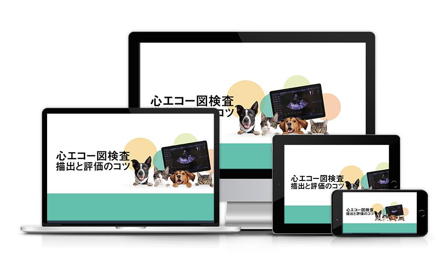 心エコー図検査 描出と評価のコツ│医療情報研究所DVD