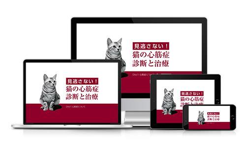 見逃さない!猫の心筋症・診断と治療│医療情報研究所DVD