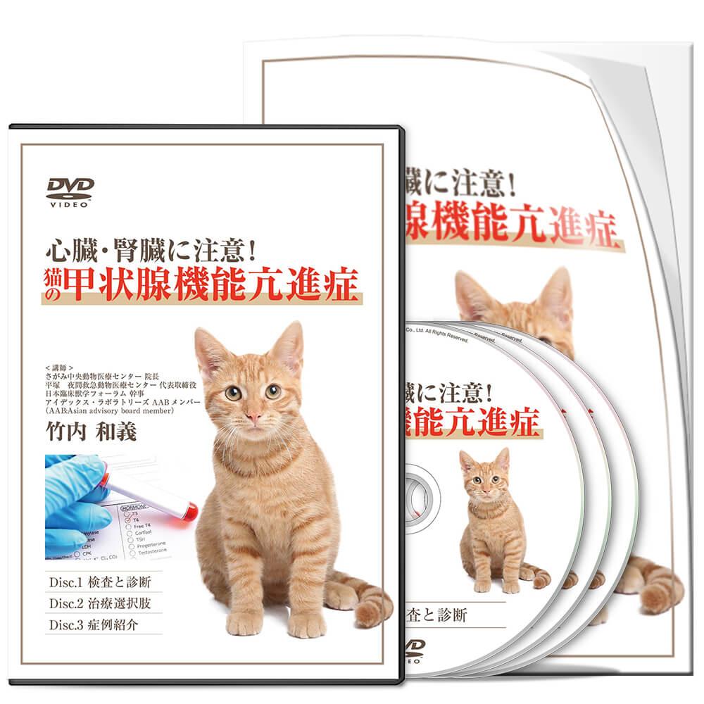心臓・腎臓に注意!猫の甲状腺機能亢進症