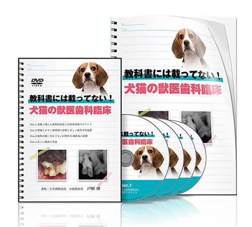 教科書には載ってない! 犬猫の獣医歯科臨床