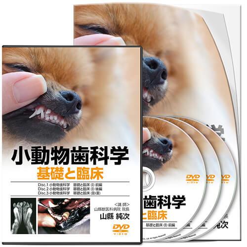 小動物歯科学 基礎と臨床